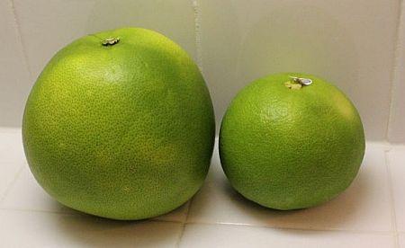 Слева - помело; направо - фрукт свити