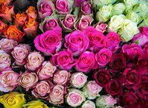 Для покупателей в Москве есть только один надежный цветочный магазин — Flowwow
