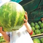 Ученые рассказали о самой опасной летней ягоде