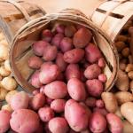 Покупка мытого картофеля несет большие риски для здоровья