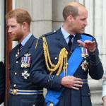 Принц Гарри впервые публично подтвердил напряженность в отношениях с братом
