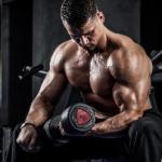 Изобретен белок для наращивания мышц без тренировок