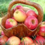 Для максимальной пользы надо есть яблоки правильно