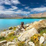 Отдых в Новой Зеландии: интересные особенности