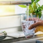 Водный баланс в организме способствует долголетию