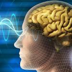 Новая методика позволит лечить деменцию без лекарств